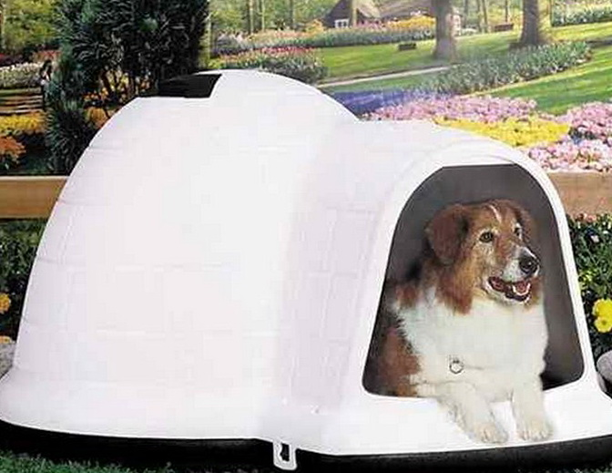Heated Dog Beds For Outside