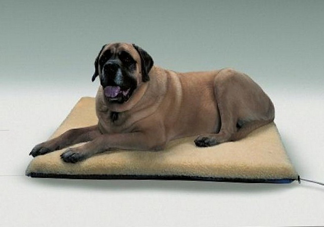 Heated Dog Beds Petco