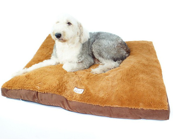 Kong Dog Bed Memory Foam