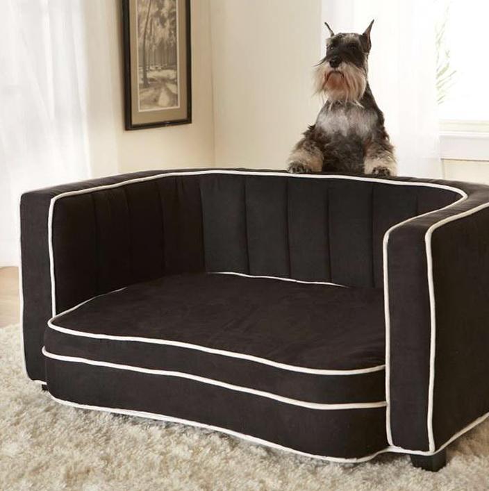 Kong Dog Beds Amazon