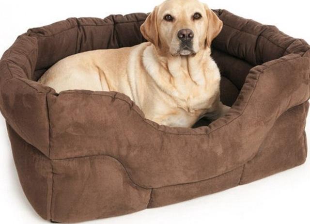 Large Dog Beds Uk
