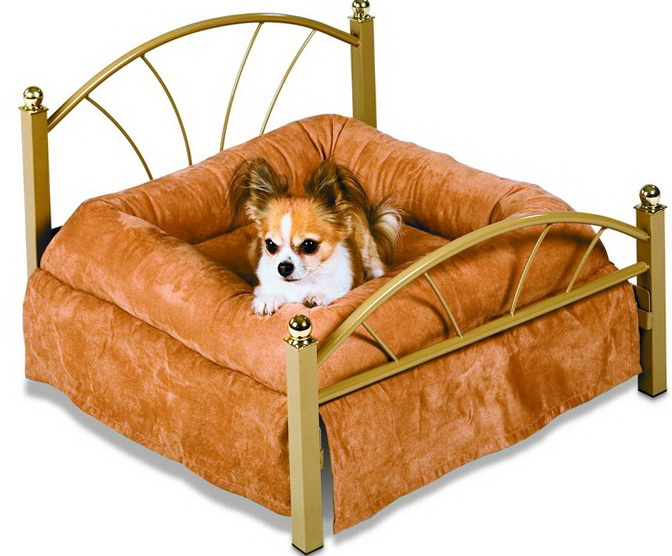 Memory Foam Dog Bed Amazon