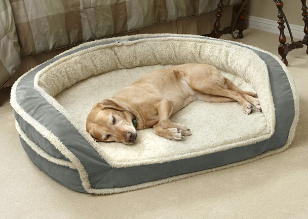 Memory Foam Dog Bed Bolster