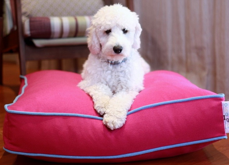 Pink Dog Beds For Large Dogs