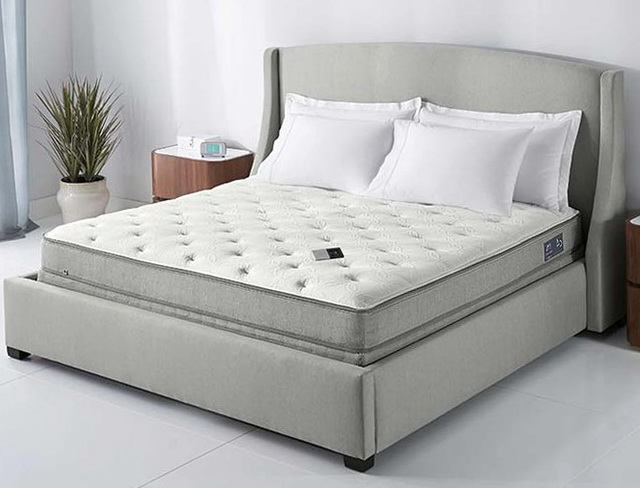 Sleep Number Bed Base