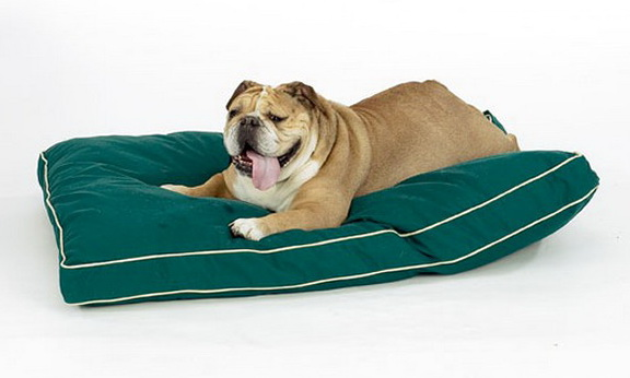 Best Dog Bed For Arthritic Dog
