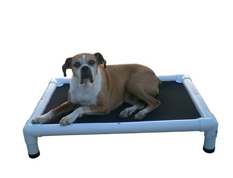 Chew Proof Dog Bed Reviews
