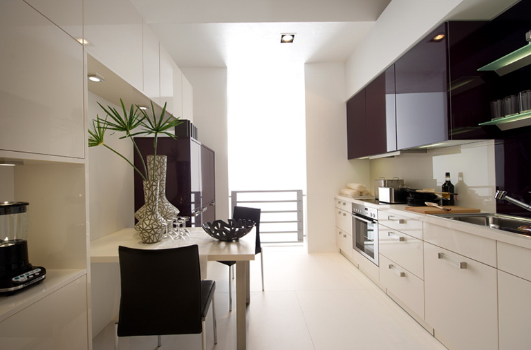Contemporary Kitchen Cabinets Chicago