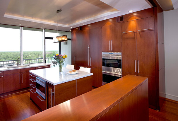 Contemporary Kitchen Cabinets Houston