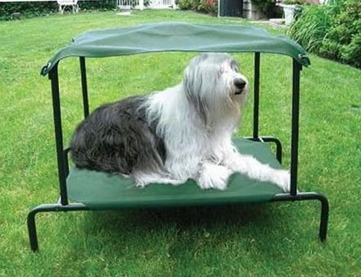Coolaroo Dog Bed With Canopy