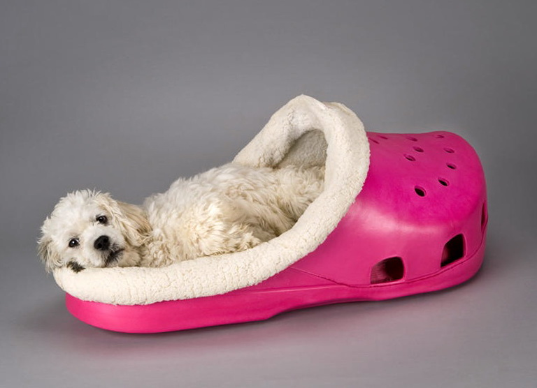 Cute Dog Beds For Medium Dogs