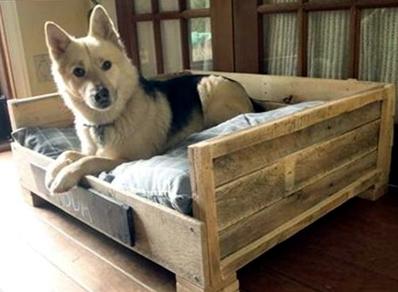 Diy Large Dog Beds1