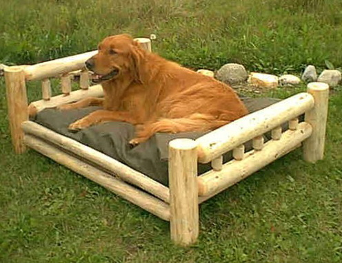 Dog Bunk Beds Large