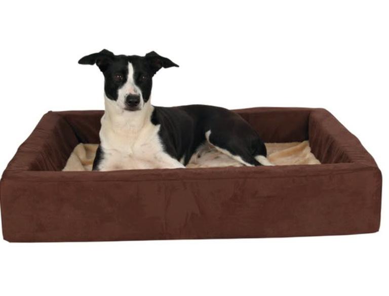 Dog Bunk Beds Uk