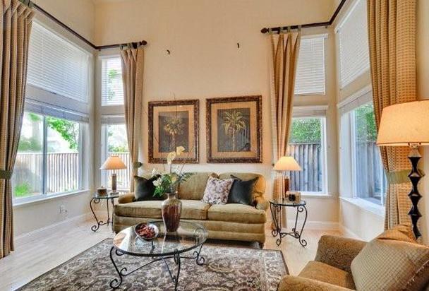 Elegant Living Room Drapes