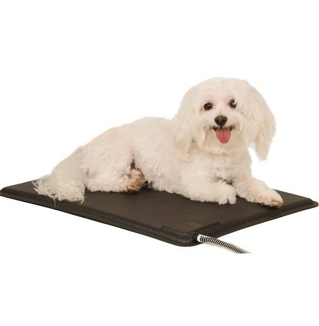 Heated Dog Bed For Small Dogs