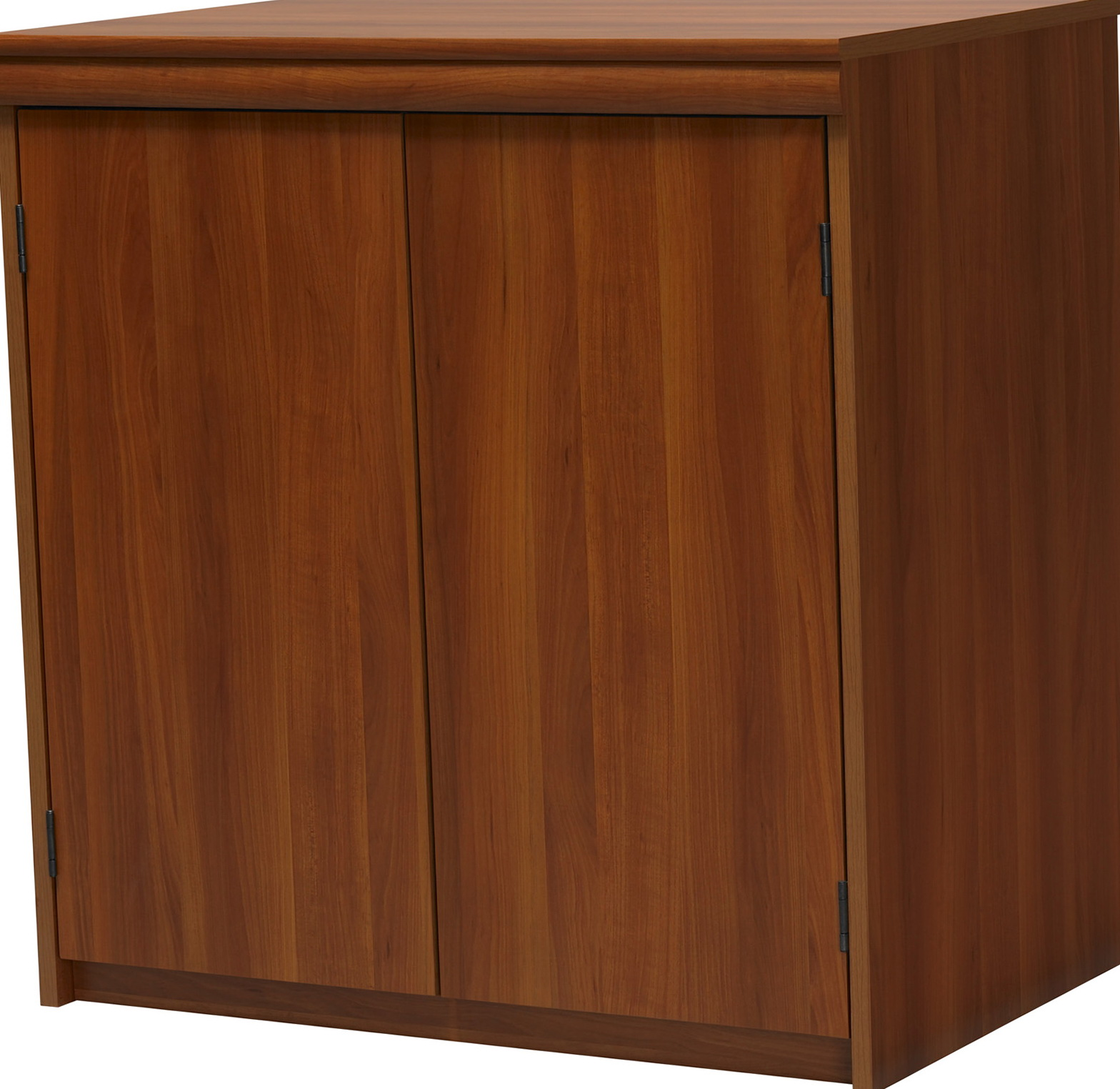 Home Depot Storage Cabinets With Doors