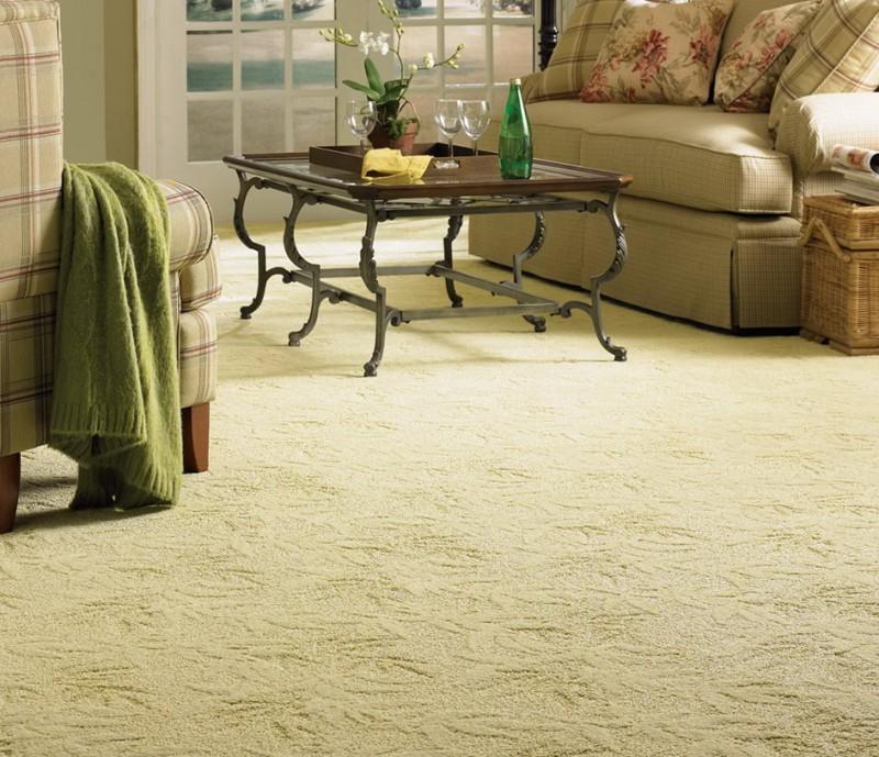 Living Room Rugs On Carpet