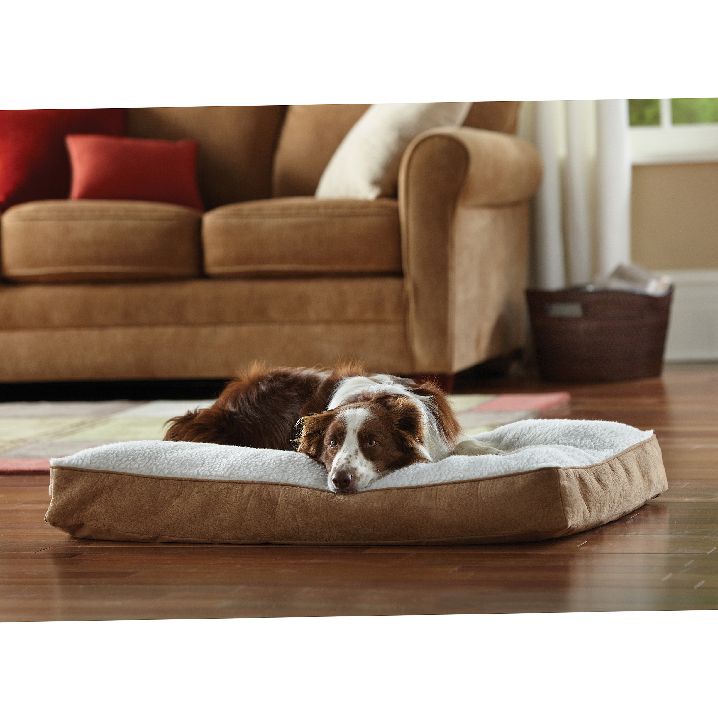 Memory Foam Dog Bed Sams Club