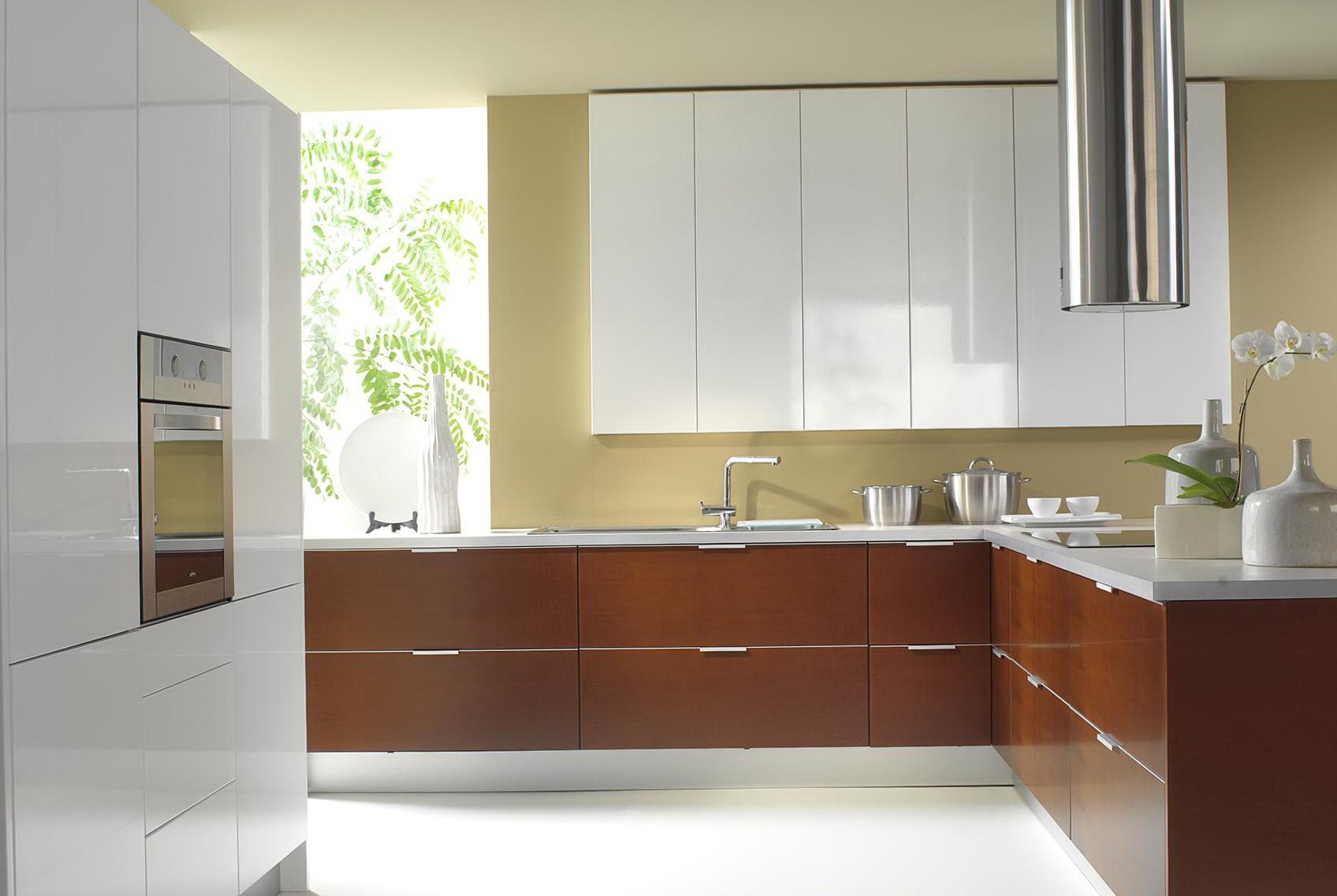 Modern Kitchen Cabinets Online1
