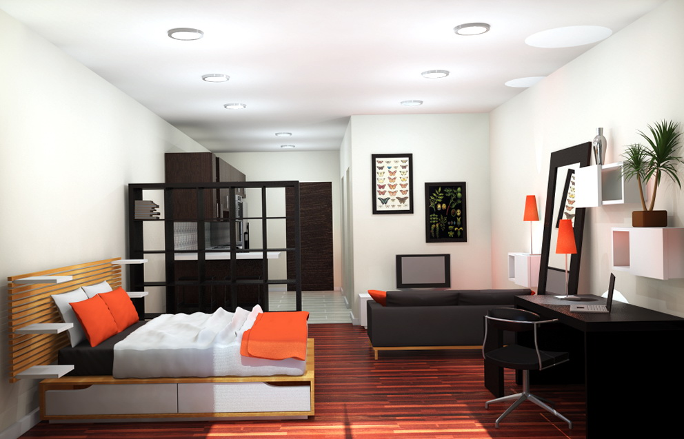 One Bedroom Apartments Design