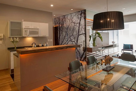 Open Kitchen Designs In Small Apartments
