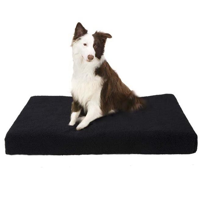 Orthopedic Dog Bed Reviews