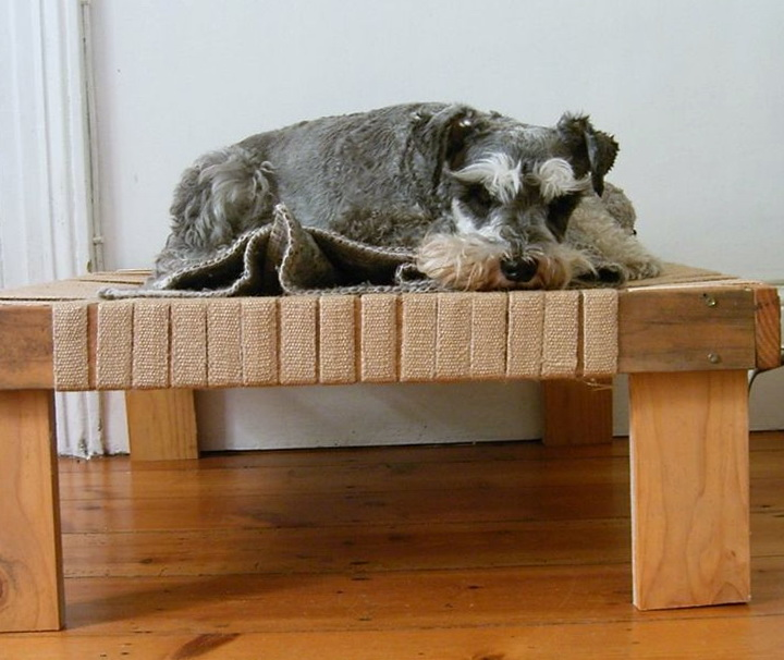 Raised Dog Bed Diy