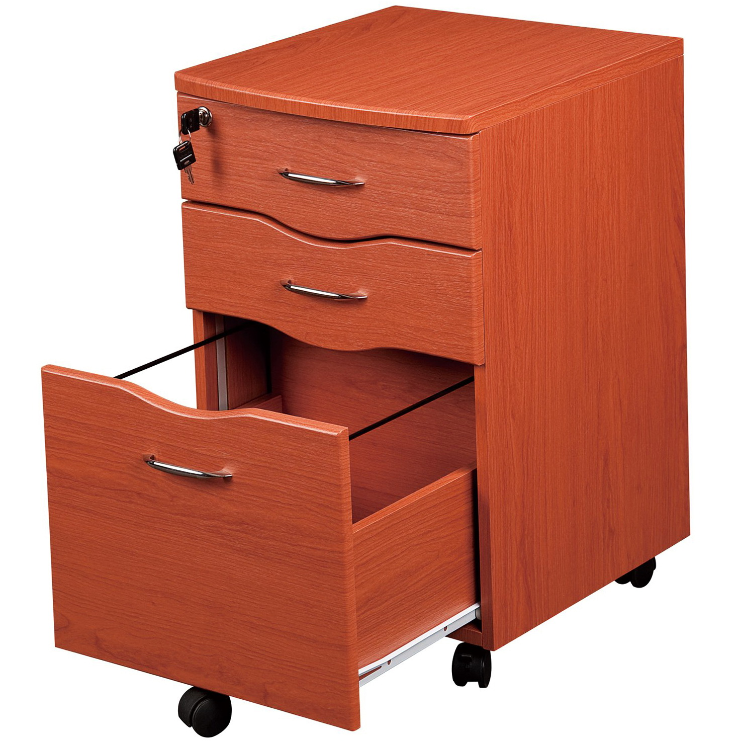 Rolling Locking Storage Cabinet