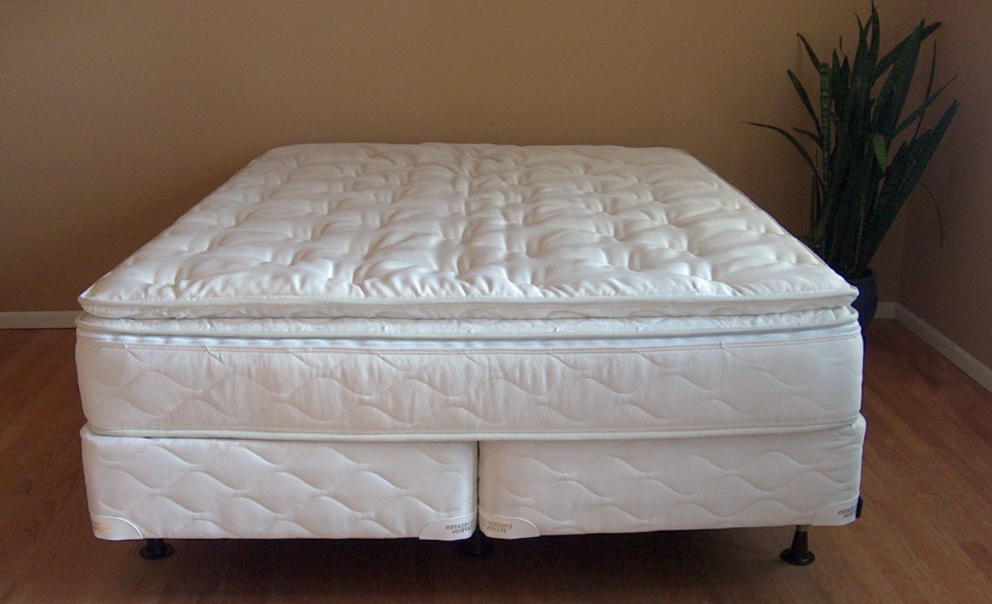 Select Comfort Bed Warranty