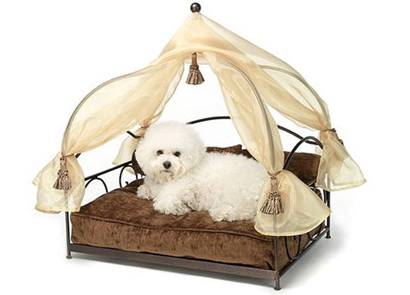 Small Dog Beds With Canopy