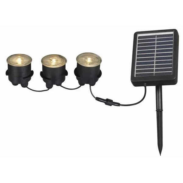 Solar Powered Yard Lights