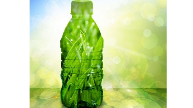 Microorganisms Used To Produce Environment Friendly