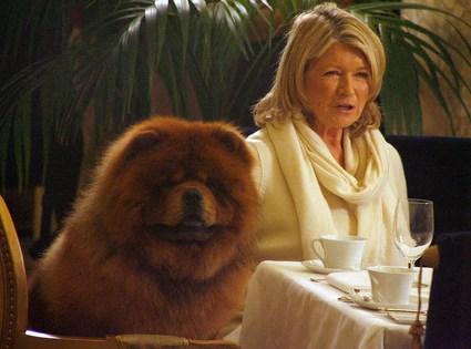 Martha Stewart Wedding Sweepstakes