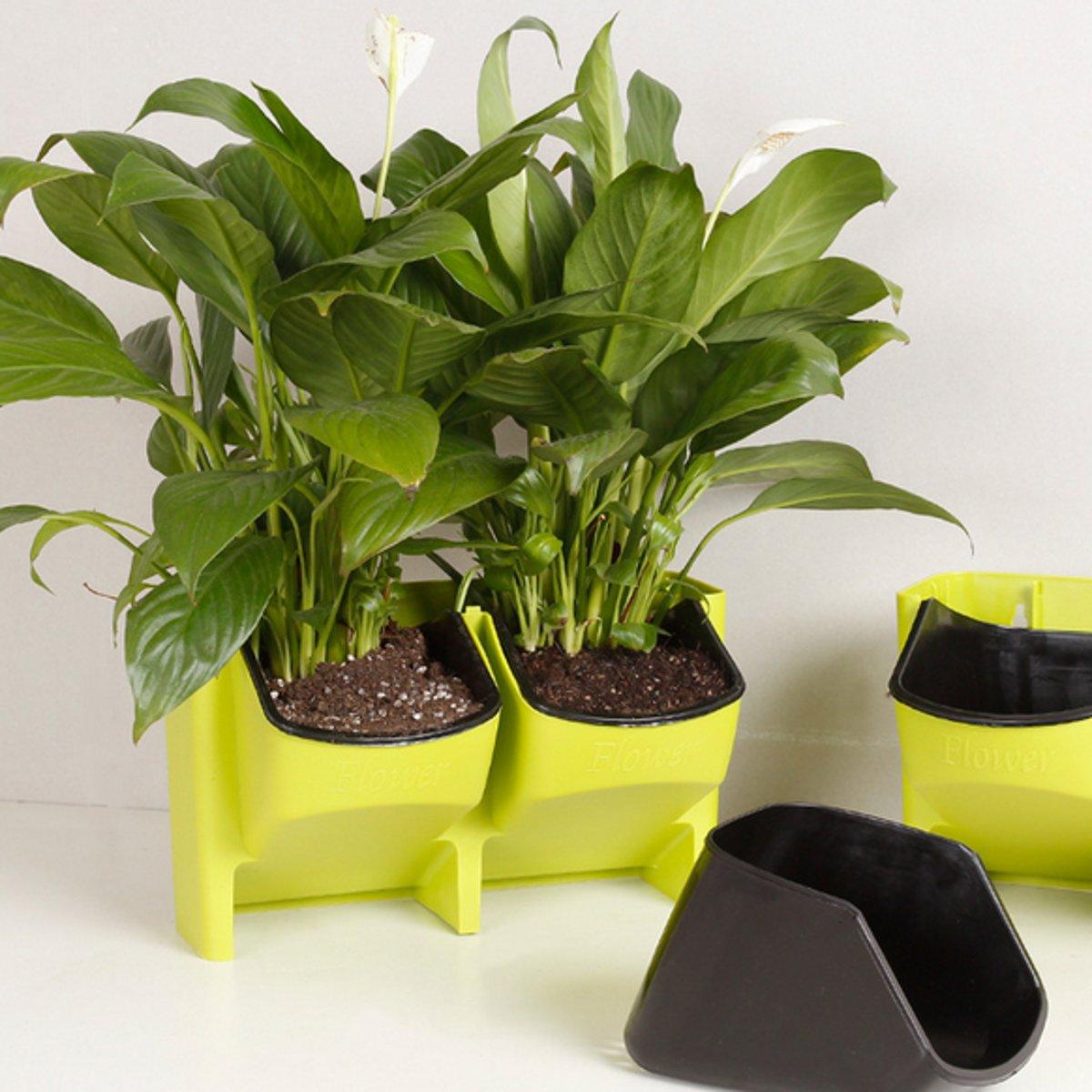 Wall Pocket Planters