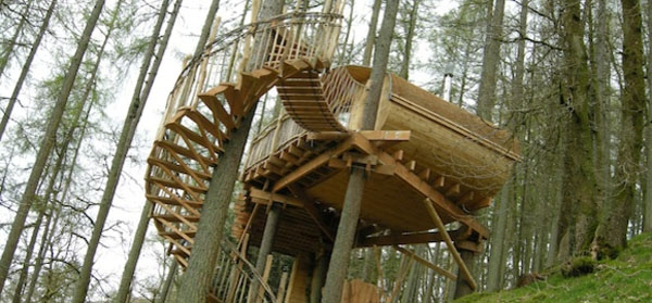 Branching Out To Treehouses Alice Fulton | Spiral Staircase Tree Trunk