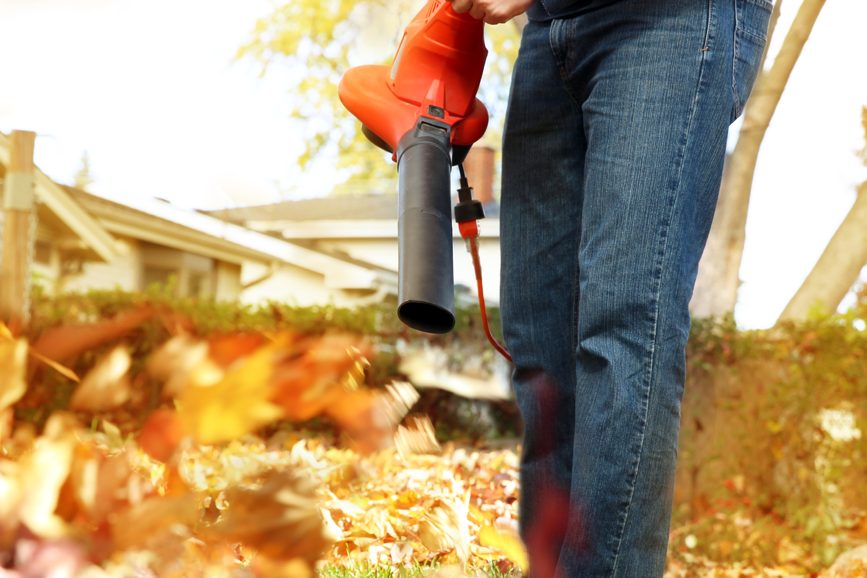 Falling Leaves Lawn Care