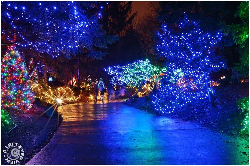 Zoo Holiday Lights