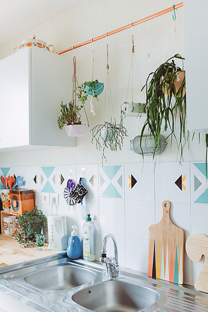 Inside Hanging Plant Holders
