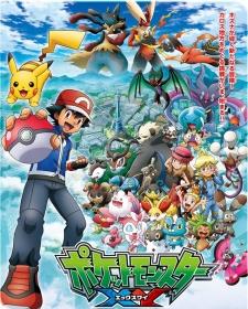 Pokemon XY 24
