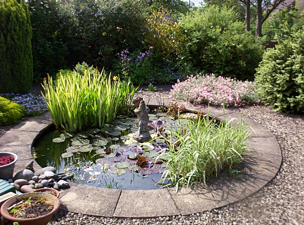 Raised Garden Pond Design Ideas