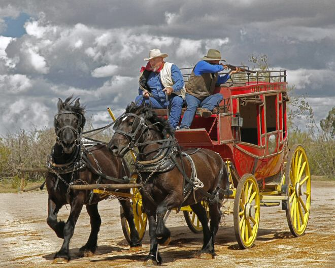 Old Western Stagecoach Horses