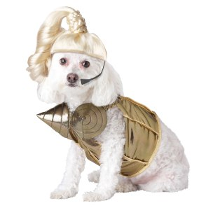 sexy halloween costumes for dogs pets and humans time