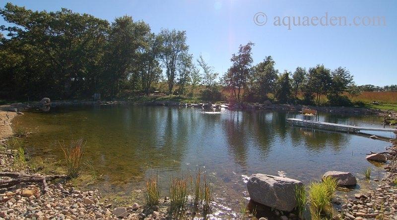Pond Underlayment Ideas