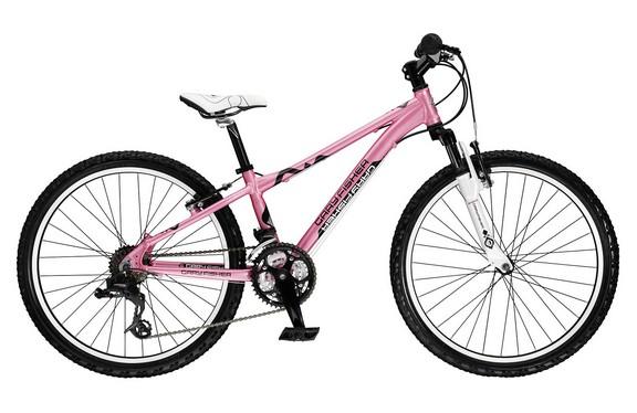 2009 Precaliber 24 Girls Bike Archive Trek Bicycle