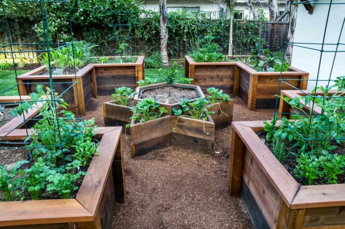 Above Ground Veggie Garden Designs