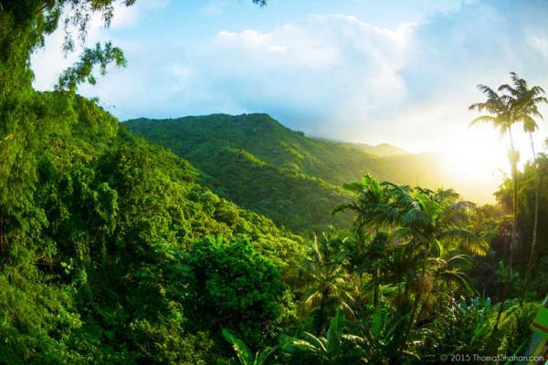 Puerto Central Rico Parque Cordillera La Nacional Map El Yunque El