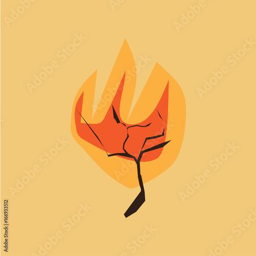 burning bush kaufen # 42