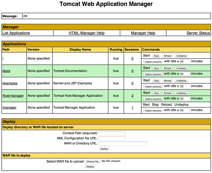 Tomcat 85 Manager Security