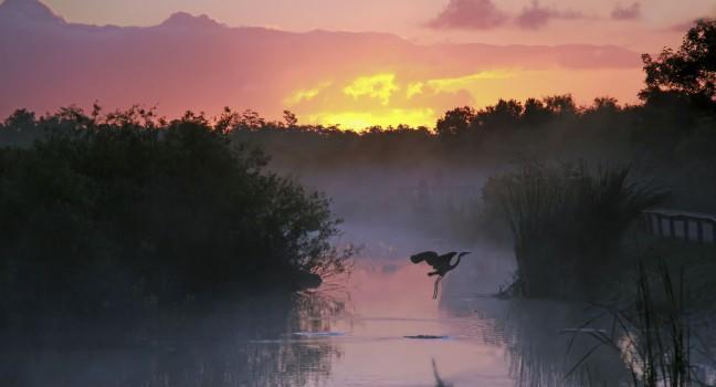 Romantic Spa South Florida